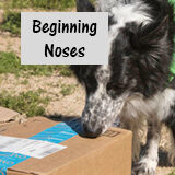Beginning Noses Payment button